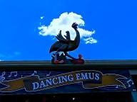 DANCING EMUS - ECHUNA
