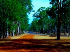 ON THE ROAD - LEAVING THE GRAMPIANS (1)