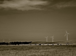 WIND FARM - Version 2
