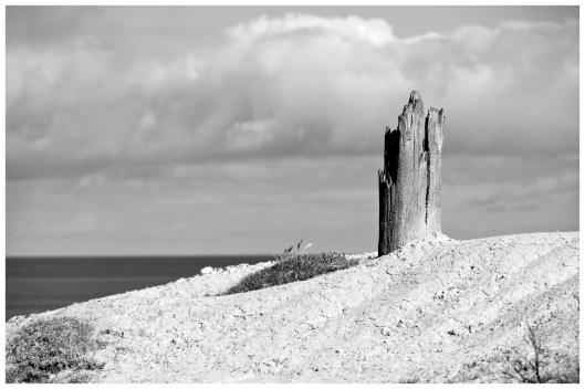 PORT WILLUNGA - SENTINEL