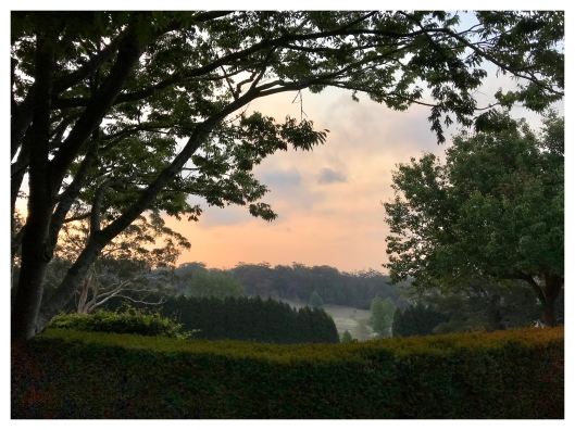 9. SUNSETS - BOWRAL 2